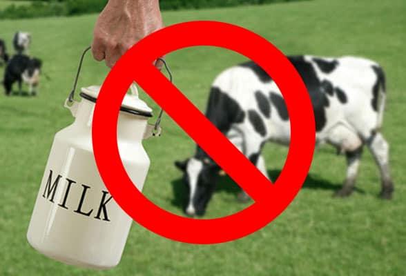 непереносимость коровьего молока